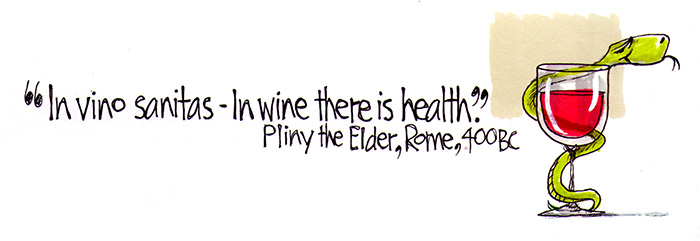 Pliny The Elder Quotes: ChicanePictures