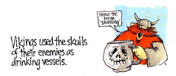 Vikings Skulls